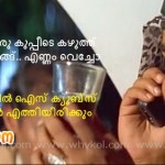 mohanlal punch dialog in malayalam movie aaram thamburan