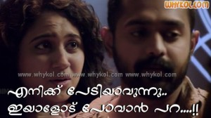 Miya george dialogue