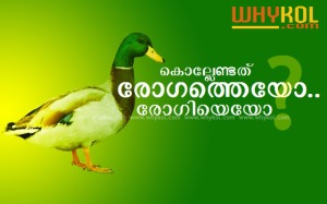 bird flu in kerala