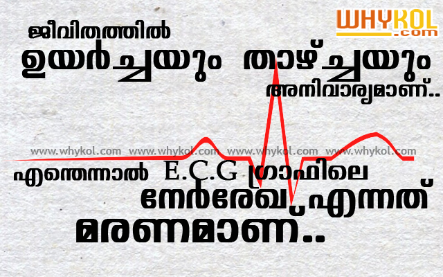 Life is like an ECG graph