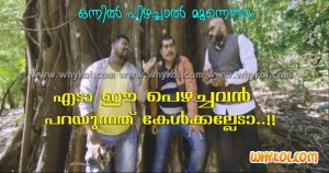 Malayalam film comedy words