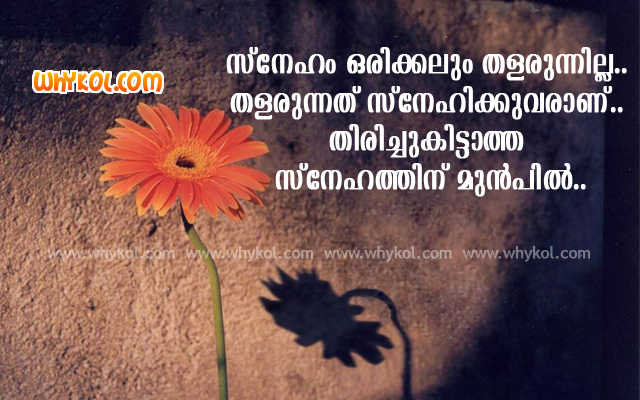 Sad Love Quotes In Malayalam