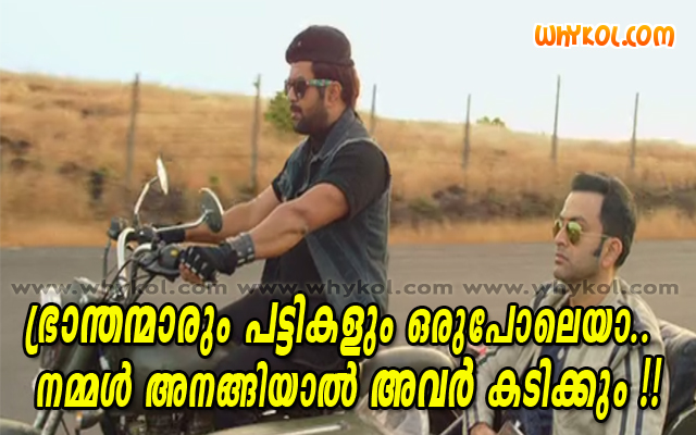 Malayalam film funny quote