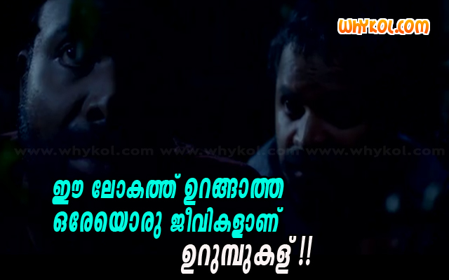 """Ants"" malayalam film words from Urumbukal Urangarilla"