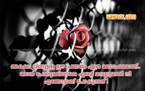 Love quotes images - Lost Love in Malayalam