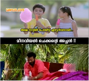 Fabric Conditioner Malayalam Tv Ad Trolls