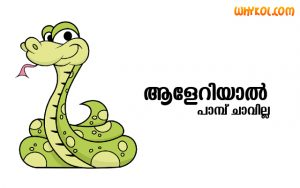Top Malayalam Proverbs or Pazhamchollukal Images
