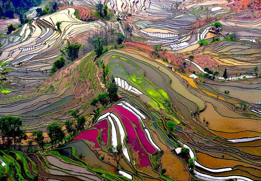 Skyview Rice Terraces China