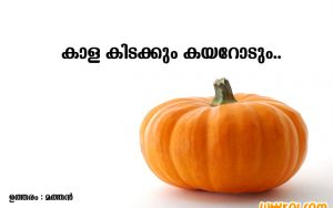 Collection of Malayalam Proverbs | Kadamkathakal
