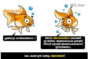 Anabas - The fish that climb trees | Gk Malayalam