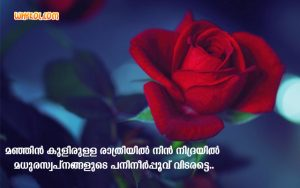 Lovely Good Night Messages | Malayalam Wishes