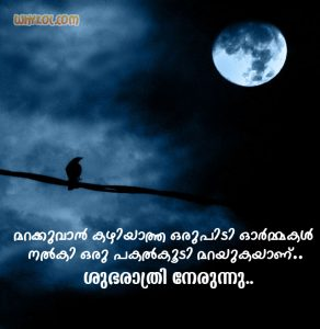 Good Night Wishes Pictures with Malayalam Quote