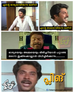 Mammooty Pling | Trolls from International Chalu Union