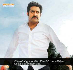 NTR simsdri movie dialogues in telugu