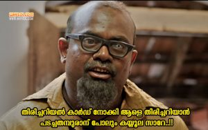 Kalabhavan Shajon Dialogues From Pareeth Pandari