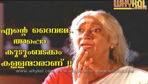 Malayalam cinema thamasha comment