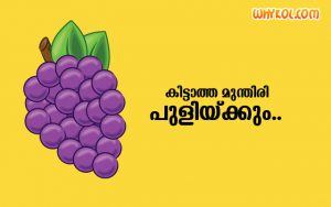 Collection of Malayalam meaningful proverbs
